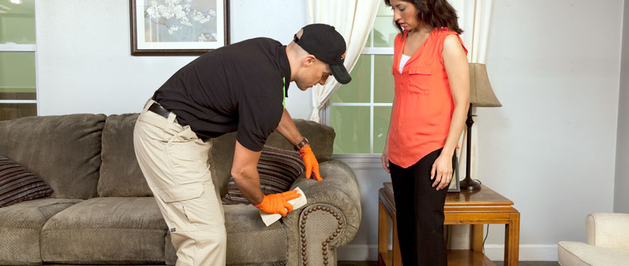 Russellville, AL carpet upholstery cleaning