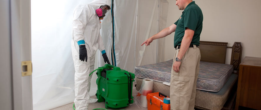 Russellville, AL mold removal process